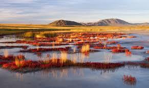 Uvs Lake Basin