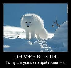 """Рішення суду щодо """"Приватбанку"""" ускладнює співпрацю України з МВФ, **** і Світовим банком, - НБУ - Цензор.НЕТ 6031"""