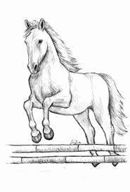 Disegni A Matita Cavalli Immagini Di Disegni Matita Da Colorare