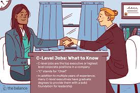 Navy Cio Org Chart What Are C Level Corporate Jobs
