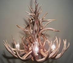 com real whitetail deer antler chandelier 47 lights shed