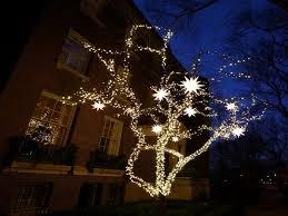 image of wonderful outdoor string lights