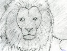 easy lion drawings in pencil.  Drawings Easy Lion Pencil Drawing  Photo9 To Lion Drawings In Pencil A