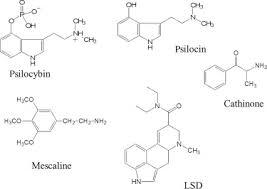 Shroom Tolerance Chart Psilocybin An Overview Sciencedirect Topics