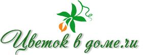 Подкормка <b>петунии</b> - правила выбора удобрений для роста и ...