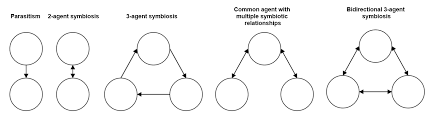 symbiotic relationships evolution are there any known mutual symbiotic relationships that