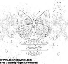 Elegant Butterfly Coloring Page 1134 Ultimate Coloring Pages 蝶