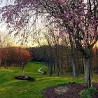 Great Trail Golf Course - Home | Facebook