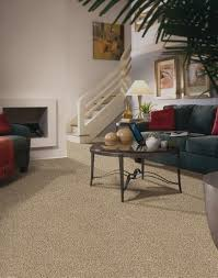 french meadows accent carpet