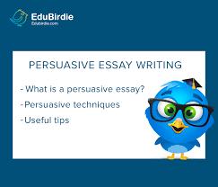 how to write a persuasive essay writing tips edubirdie com persuasive essay how to write it ease