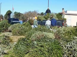 DeKalb County Christmas Tree Recycling