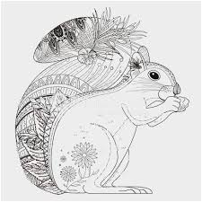Flying Squirrel Coloring Page Pleasant Red Squirrel Coloring Page