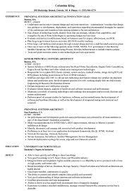 Principal Systems Architect Resume Samples Velvet Jobs