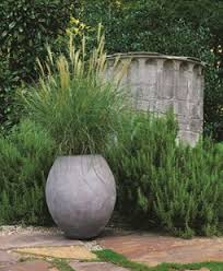Small Picture Ornamental Grasses Garden Design