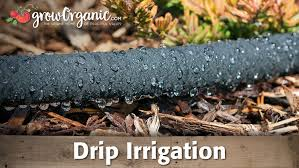 drip irrigation save water organic gardening blog agriculture container pipe sprinkler system tubing hose parts micro
