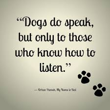 Quotes About A Girl And Her Dog Fascinating 48 Best Dog Lover Quotes Images On Pinterest Dog Quotes Fur Free