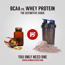 bcaa vs whey protein the definitive
