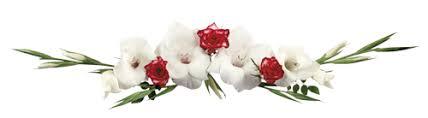 """Résultat de recherche d'images pour """"Rose blanche barre de séparation blog"""""""