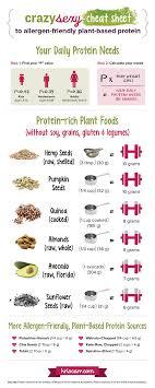 Top 12 Allergen Friendly Vegan Protein Sources Recipes
