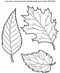 Small Picture The Most Brilliant Fall Leaves Coloring Pages with regard to