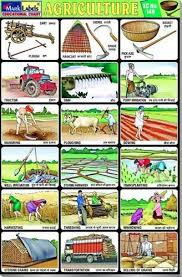 Agriculture Tools Chart Www Prosvsgijoes Org