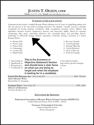 Resume Opening Statements Examples