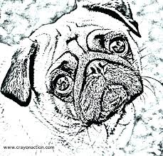 pug coloring pages pug coloring page printable pug coloring page for free pages animals pug pug coloring pages