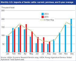 Feeder Cattle Index Chart Usda Ers Chart Detail