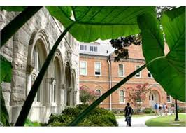 tulane university of louisiana transfer and admissions information tulane pic jpg