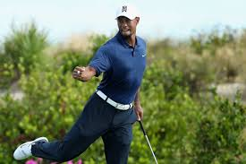 Tiger Woods net worth 2018 - He is a very wealthy man indeed