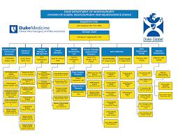 Hospital Org Chart Hospital Organizational Chart Template