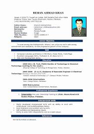 Design Resume Template Examples Web Designer Resume Word Format
