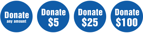 Image result for donation buttons amounts