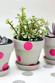Flower Pot Decoration Designs