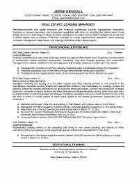Sample Resume Real Estate Marketing Executive Best Mercial Property