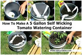 how to make a 5 gallon self watering container bucket garden system wa