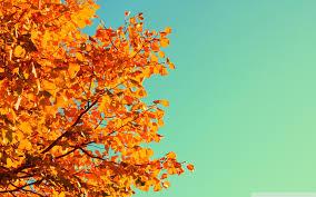 fall desktop backgrounds tumblr. Brilliant Desktop Wide 1610 With Fall Desktop Backgrounds Tumblr M
