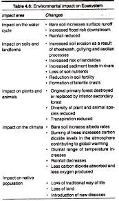 essay on ecosystem environment environmental impact on ecosystem
