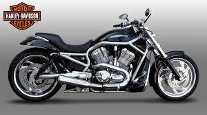 harley davidson releases new motorcycle designed for men