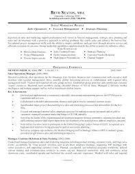 Core Competencies Examples Resume Resume Web