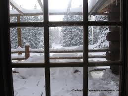 Cabin Windows chucks cabin linhart photography 7793 by uwakikaiketsu.us
