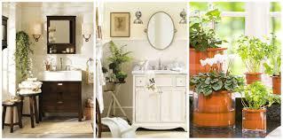 Decorative Accessories For Bathrooms Bathroom Decorations Houseofflowersus