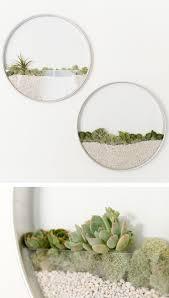 I più originali vasi e piante in miniatura e non solo