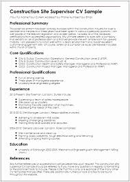 5 Mining Safety Manager Sample Resume Whghto Free Samples