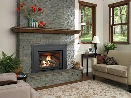 wood burning fireplace insert reviews wood burning fireplace inserts reviews inspirational interior pellet stove inserts pellet stove insert regency wood