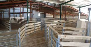 new shearing sheds