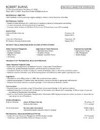 Example Objectives For Resumes Nice Finance Position Objective