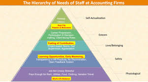 Accounting Career Progression Chart 34 Extraordinary Hierarchy Of Accounting