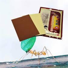 <b>DISAAR</b> 8Pcs/bag <b>Self heating</b> Ant Essential oil Medical Pain Relief ...