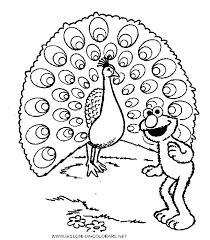 Disegno Di Pavoni Immagini Da Colorare Animali Pavoni Immagine